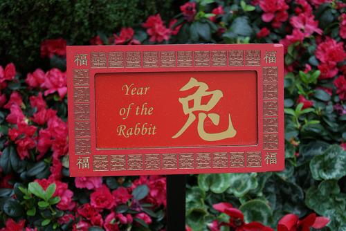 Chinese Zodiac Predictions 2013 – Rabbit (1927, 1939, 1951 1963, 1975, 1987, 1999, 2011)