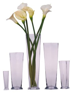 Feng Shui Vase for Relationship